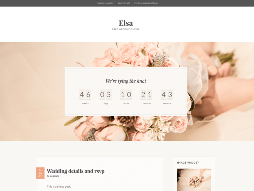 elsa tema wordpress gratis